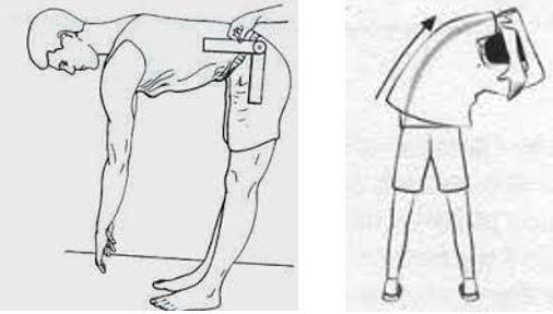 Avaliação postural com goniometro